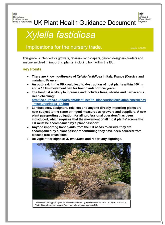 Guidance on Xylella fastidiosa implications for the trade v6 12th Jan_Page_1