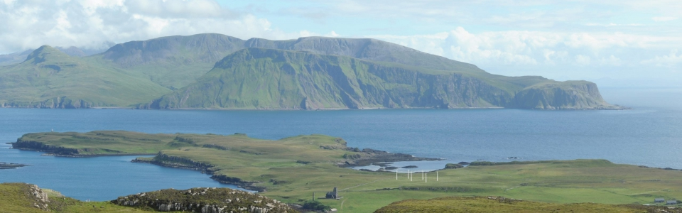 Canna_Viewpoint